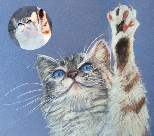 Obra por encargo - Gato Dibujado